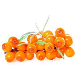 Sea buckrthorn good for pastry
